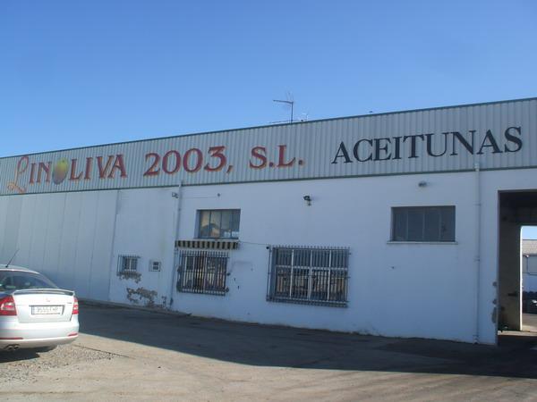 LINOLIVA 2003, S.L.