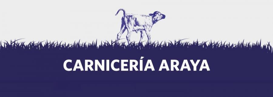 CARNICERÍA ARAYA