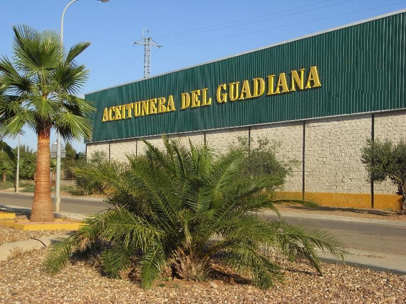 ACEITUNERA DEL GUADIANA